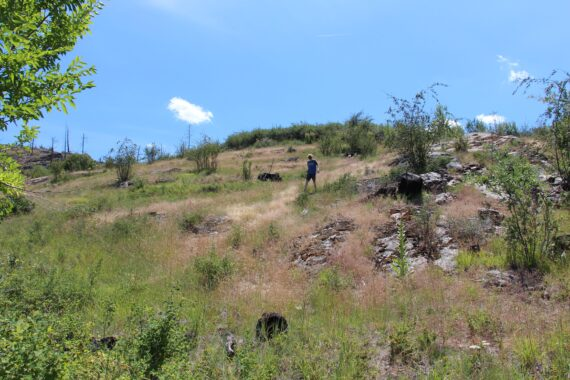 Steep hillside of Sweet Valley Acres - this is where we would build our forever home