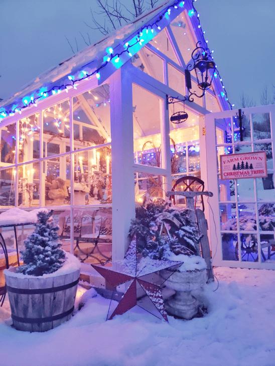 Christmas Greenhouse