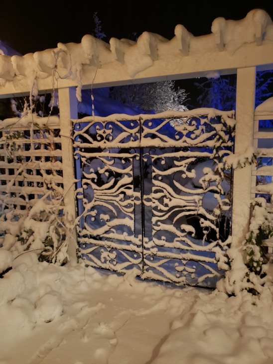 Vintage iron gates covered in snow
