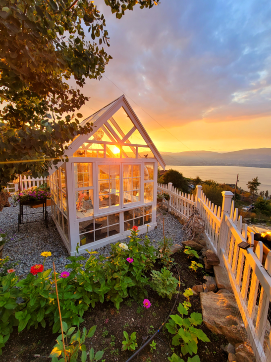 Greenhouse with sunset
